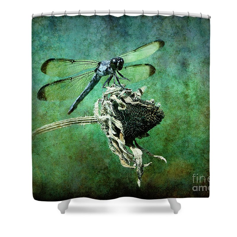 Dragonfly Shower Curtain featuring the photograph Dragonfly Art by Sari Sauls