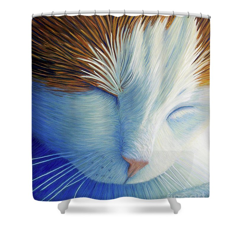 Cat Shower Curtain featuring the painting Dream Within A Dream by Brian Commerford