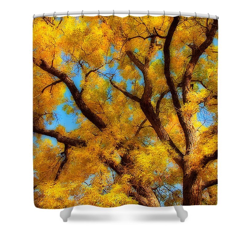 Giant Shower Curtain featuring the photograph Dreamy Crisp Autumn Day by James BO Insogna