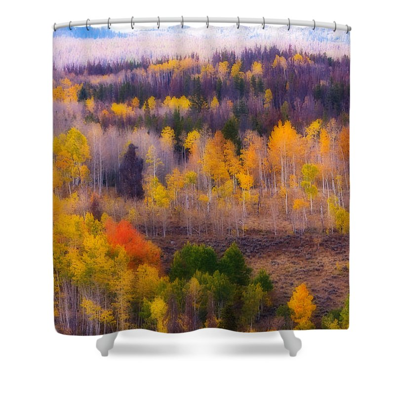 Trees Shower Curtain featuring the photograph Dreamy Rocky Mountain Autumn View by James BO Insogna