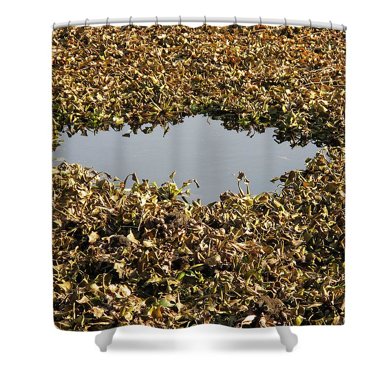 Horizontal Shower Curtain featuring the photograph Dried Leaves In A Pond by Stefania Levi