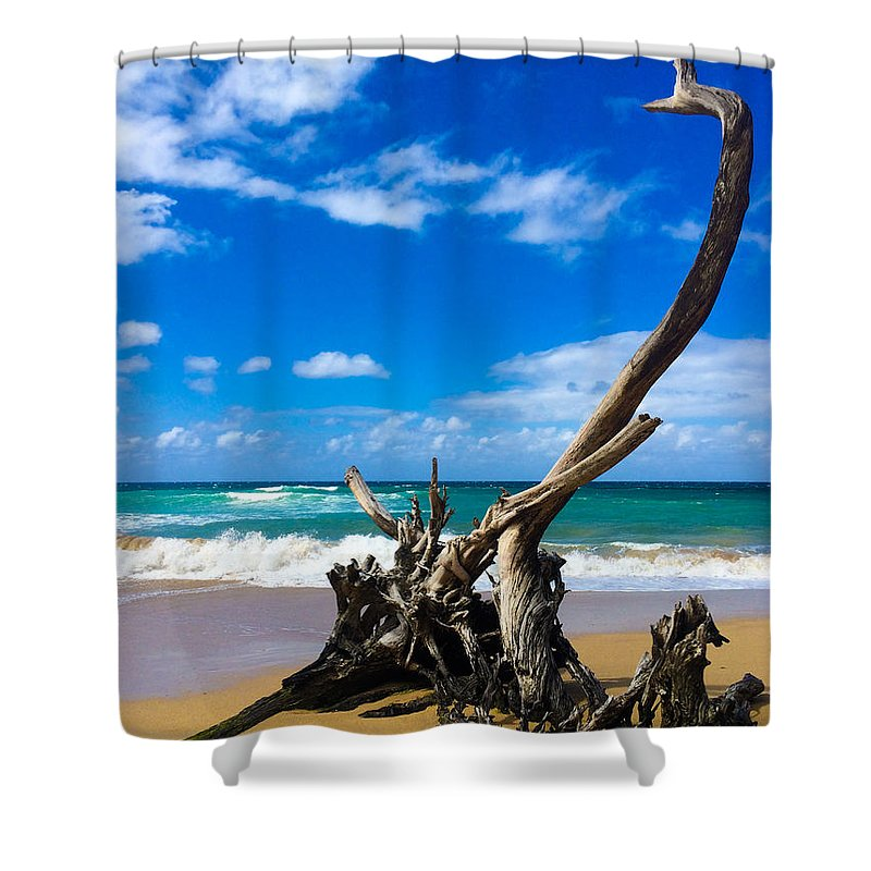 Hawaii Shower Curtain featuring the photograph Drifted by William Sikora