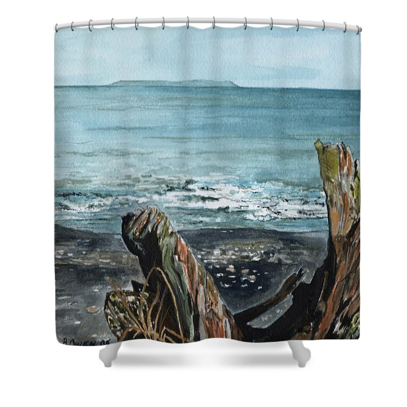Watercolor Shower Curtain featuring the painting Driftwood by Brenda Owen