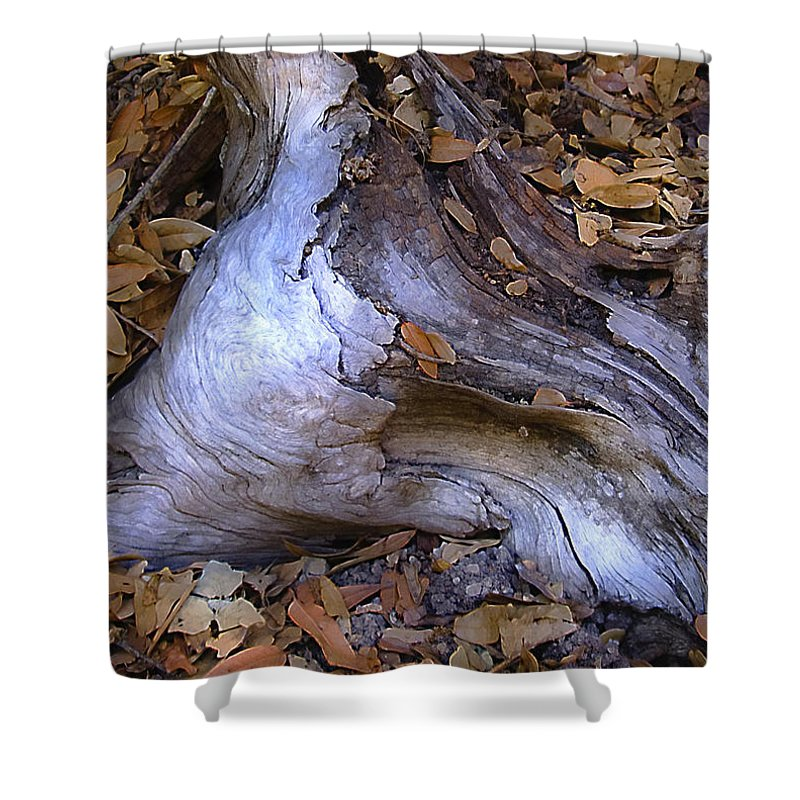 Landscape Shower Curtain featuring the photograph Driftwood In Lahonda by Karen W Meyer