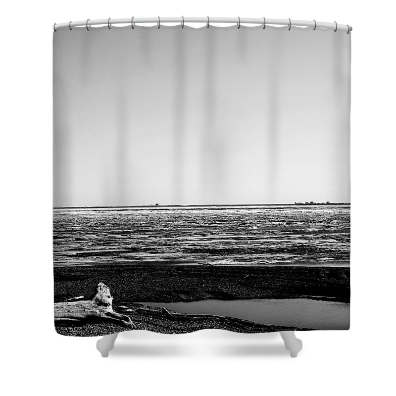 Landscape Shower Curtain featuring the photograph Driftwood On Arctic Beach Balck And White by Anthony Jones