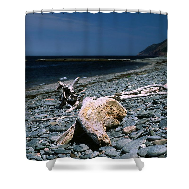 Weathered Driftwood Shower Curtain featuring the photograph Driftwood On Rocky Beach by Sally Weigand