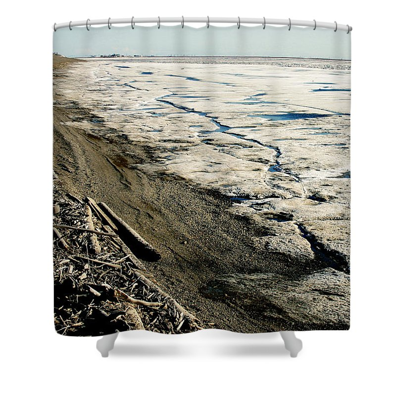 Drift Wood Shower Curtain featuring the photograph Driftwood On The Frozen Arctic Coast by Anthony Jones