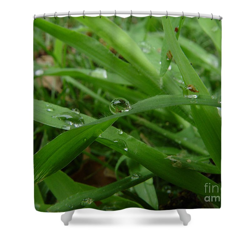Water Droplet Shower Curtain featuring the photograph Droplets 01 by Peter Piatt