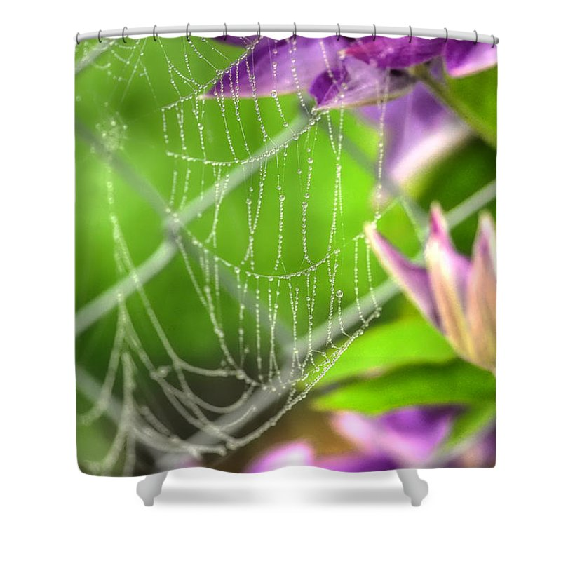 Web Shower Curtain featuring the photograph Droplets Of Fog by Chris Fleming