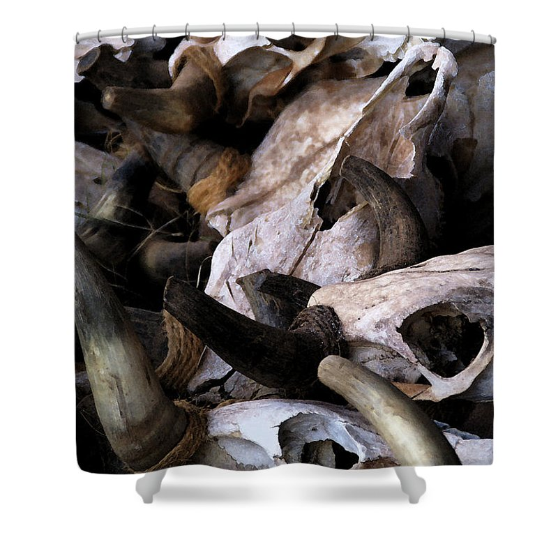 Bones Shower Curtain featuring the photograph Dry As Bones by Linda Shafer