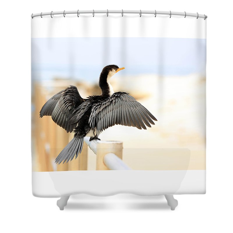 Shower Curtain featuring the photograph Drying Out Bird by David Trent