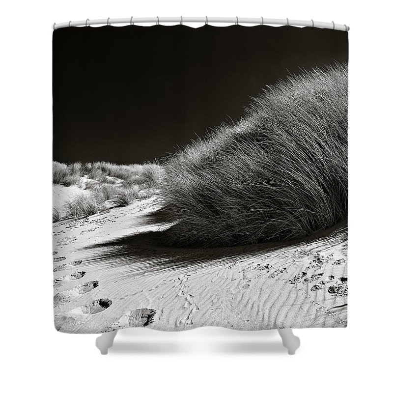 Dune Shower Curtain featuring the photograph Dune Grass by Dave Bowman