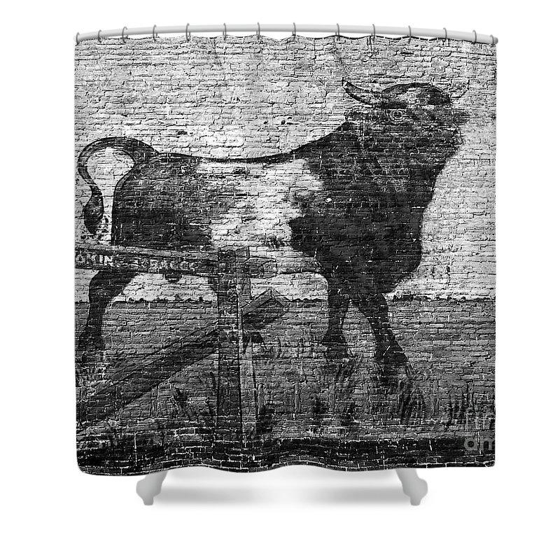 Bull Durham Shower Curtain featuring the photograph Durham's Bull by David Lee Thompson