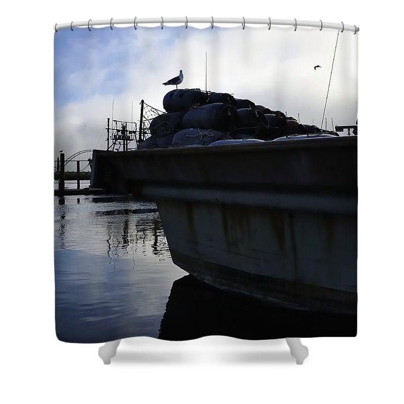 Oregon Shower Curtain featuring the photograph Dusk Seagull 2386 by Jerry Sodorff