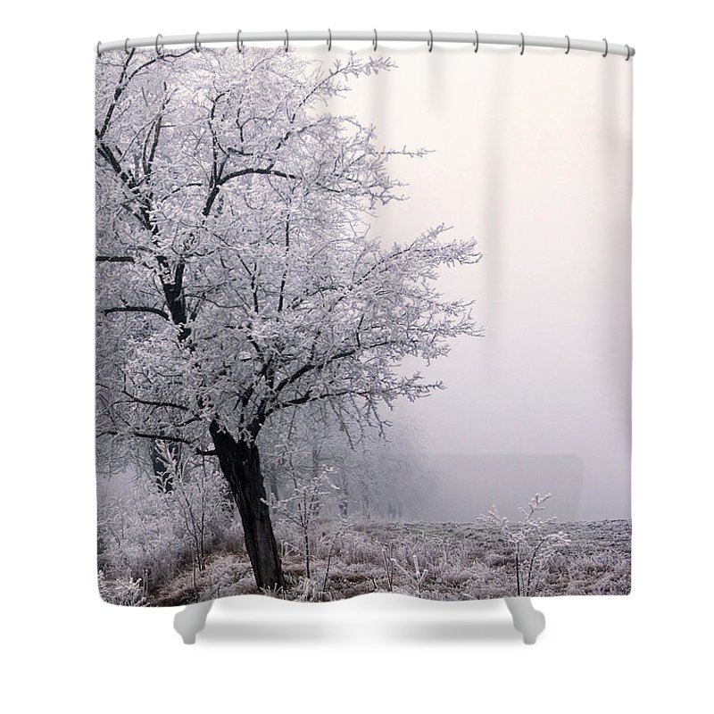 Frost Shower Curtain featuring the photograph Early Morning Frost by Cliff Norton