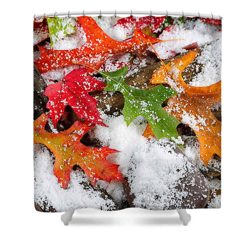 Autumn Shower Curtain featuring the photograph Early Snow During Autumn by Thomas Baker