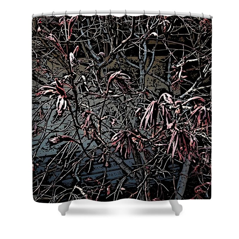 Digital Photography Shower Curtain featuring the digital art Early Spring Abstract by David Lane