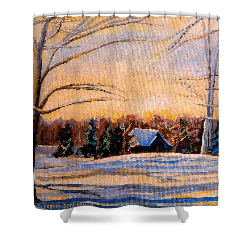 Winter Landsacape Shower Curtain featuring the painting Eastern Townships In Winter by Carole Spandau