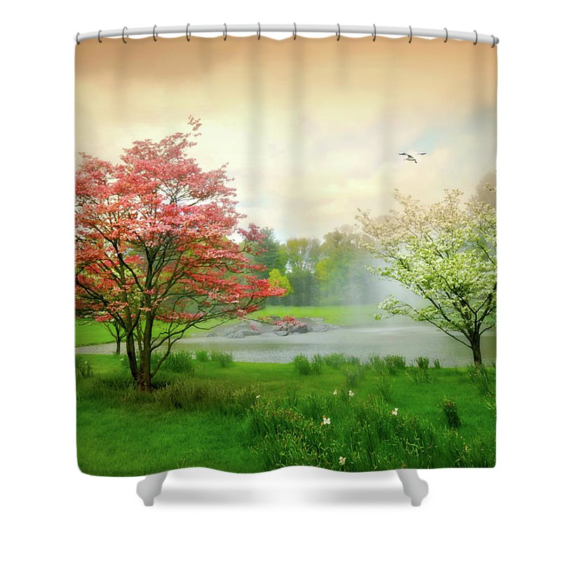 Easy On Life Shower Curtain featuring the photograph Easy On Life by Diana Angstadt