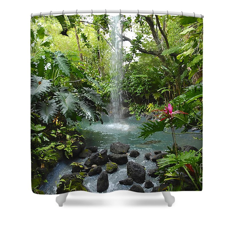 Garden Of Eden Shower Curtain featuring the photograph Eden by David Lee Thompson