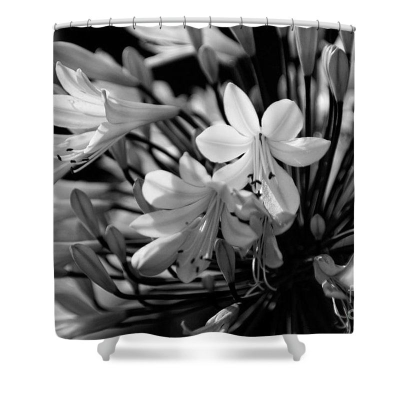 Flower Shower Curtain featuring the photograph Elegance - Bw by Linda Shafer