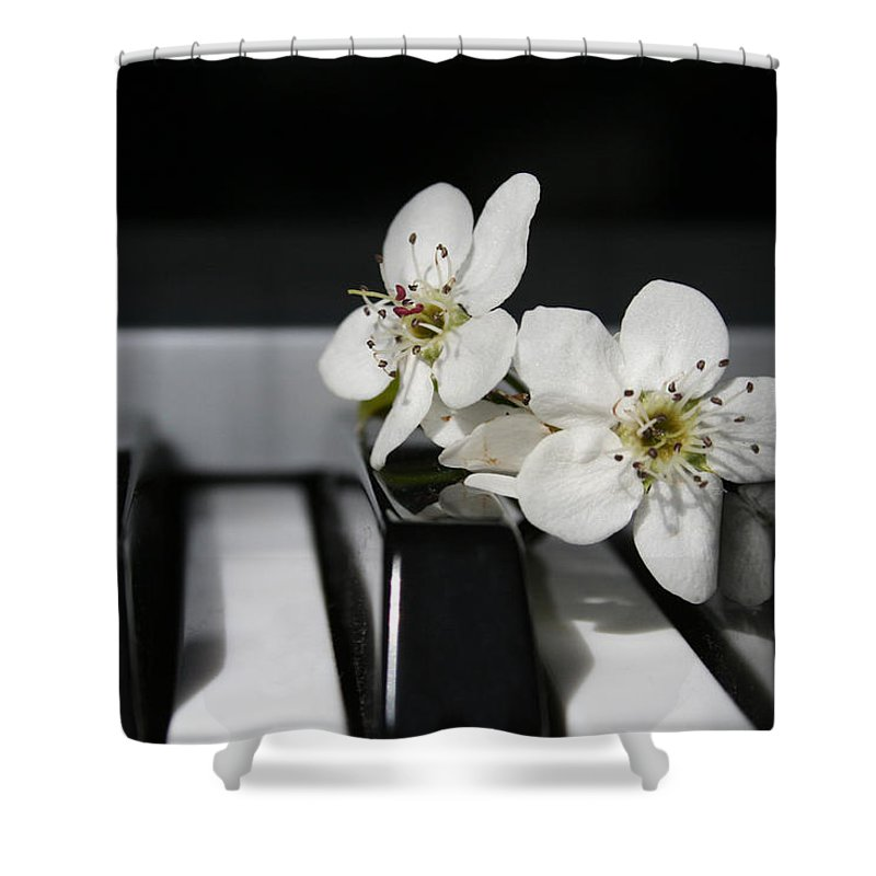 Still Life Photography Shower Curtain featuring the photograph Elegant by Linda Sannuti