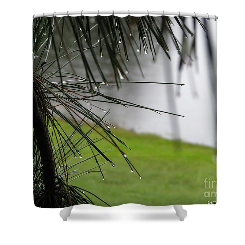Lakes Shower Curtain featuring the photograph Elements by Greg Patzer