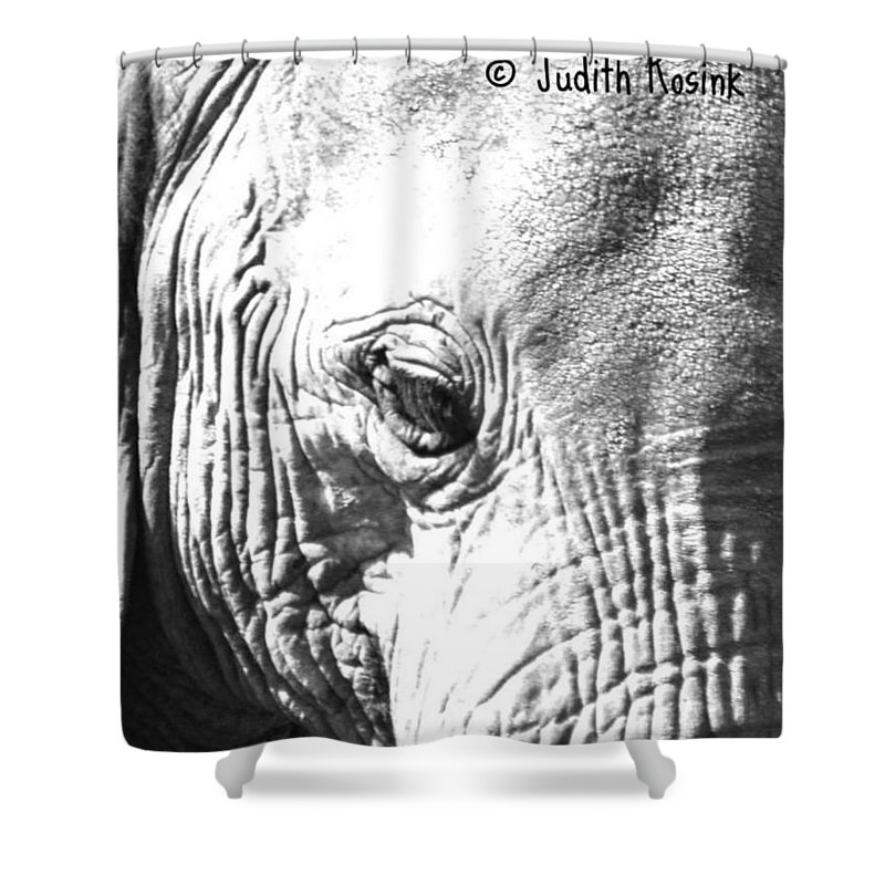 Elephant Shower Curtain featuring the photograph Elephant Portret by Judith Rosink