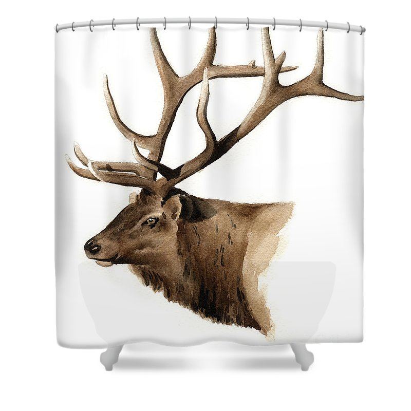 Elk Shower Curtain featuring the painting Elk by David Rogers