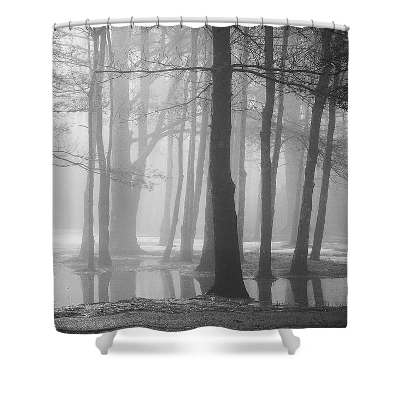 New England Shower Curtain featuring the photograph Ellacoya Fog - January Thaw by Robert Clifford