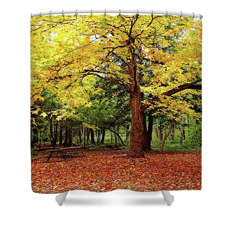 Elora Shower Curtain featuring the photograph Elora Gorge Campsite In Fall by Debbie Oppermann