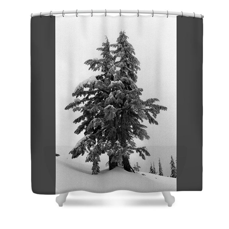 Snow Shower Curtain featuring the photograph Embrace by Lyle Crump