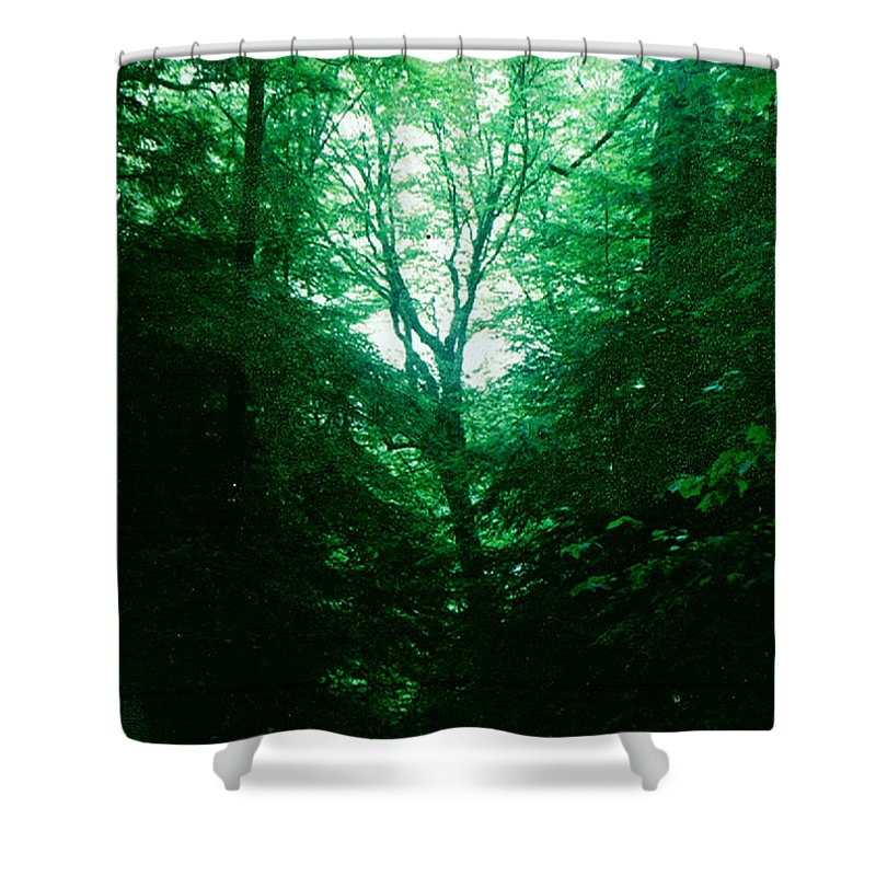 Emerald Shower Curtain featuring the photograph Emerald Glade by Seth Weaver