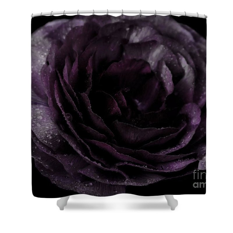 Purple Shower Curtain featuring the photograph Emily's Great Ant Thingy Flower..... by September Stone
