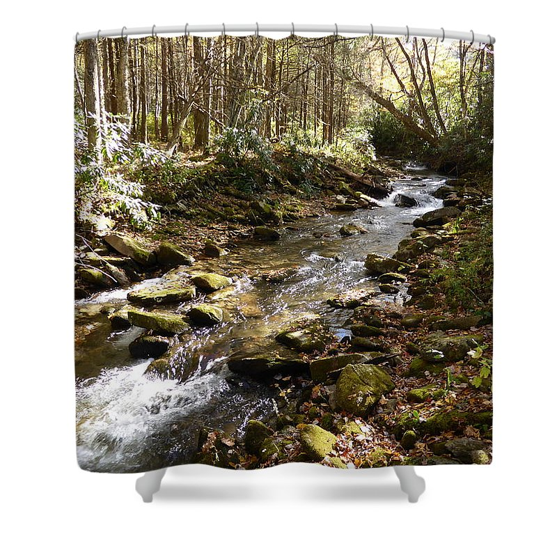 Enchanted Stream Shower Curtain featuring the photograph Enchanted Stream - October 2015 by Joel Deutsch