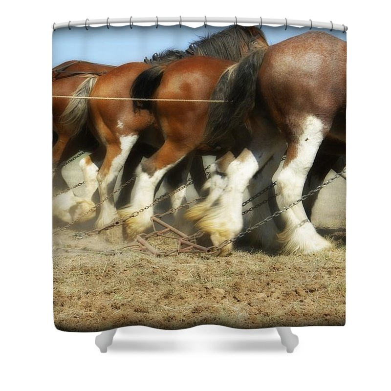 Kathryn Potempski Shower Curtain featuring the photograph End Of The Day by Kathryn Potempski