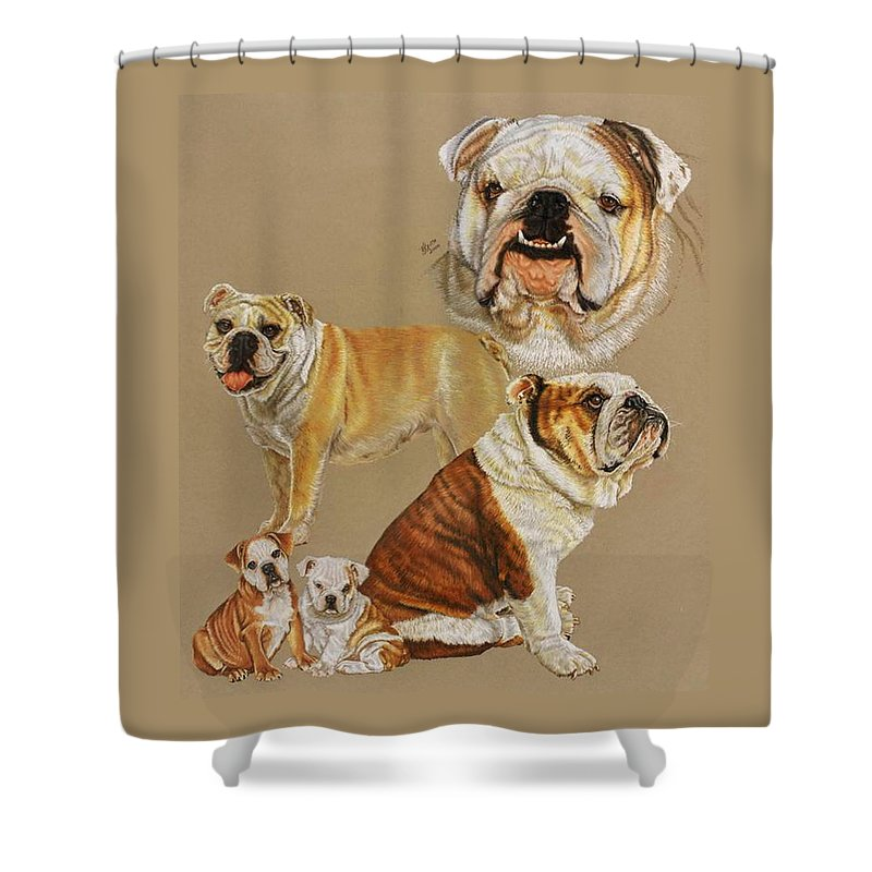 Purebred Shower Curtain featuring the drawing English Bulldog by Barbara Keith