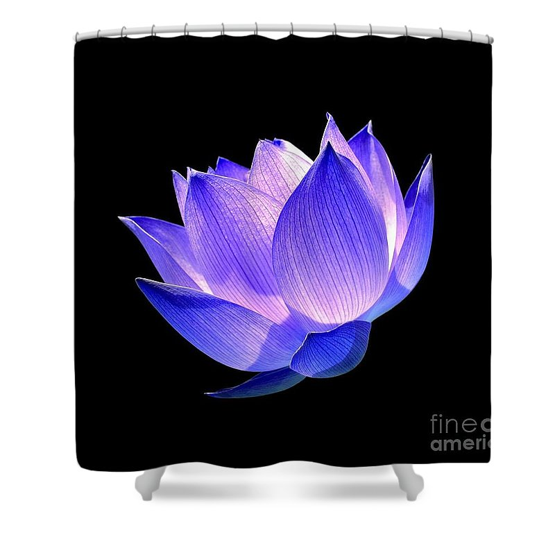 Flower Shower Curtain featuring the photograph Enlightened by Jacky Gerritsen