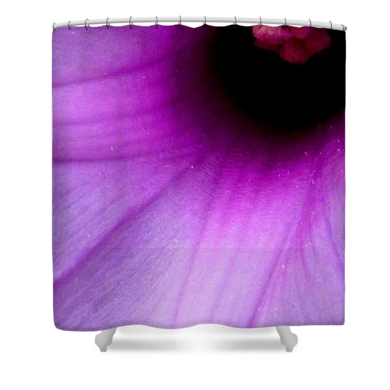 Flower Shower Curtain featuring the photograph Enticing by Ian MacDonald