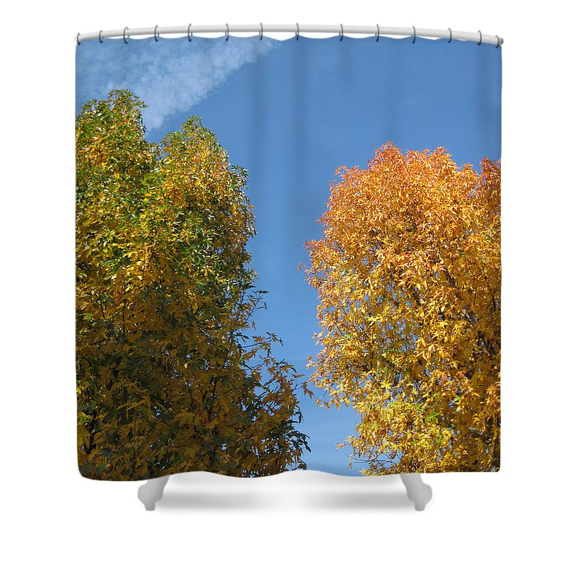 Autumn Shower Curtain featuring the photograph Equinox by James Barnes