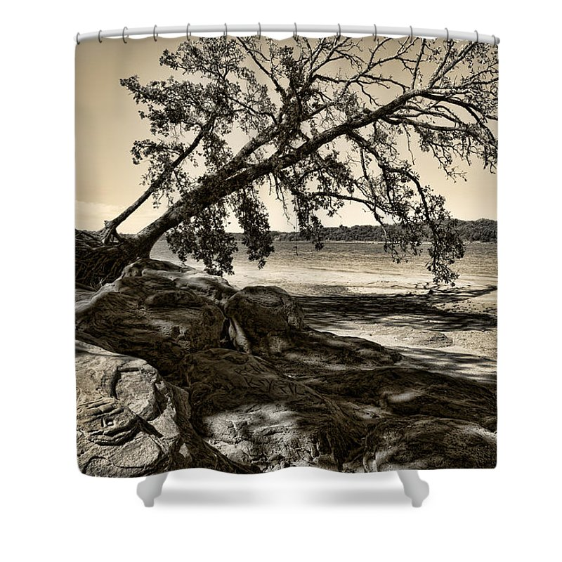 Tree Shower Curtain featuring the photograph Erosion - Anselized by Ricky Barnard