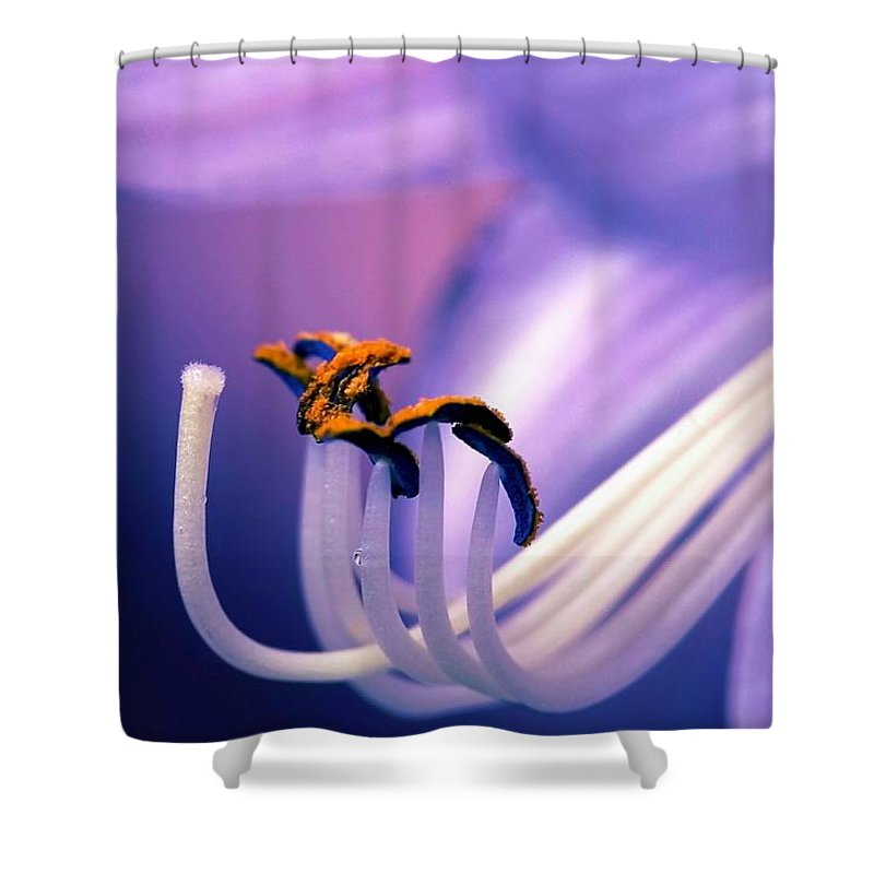 Flower Shower Curtain featuring the photograph Eternal Seductiveness by Mitch Cat