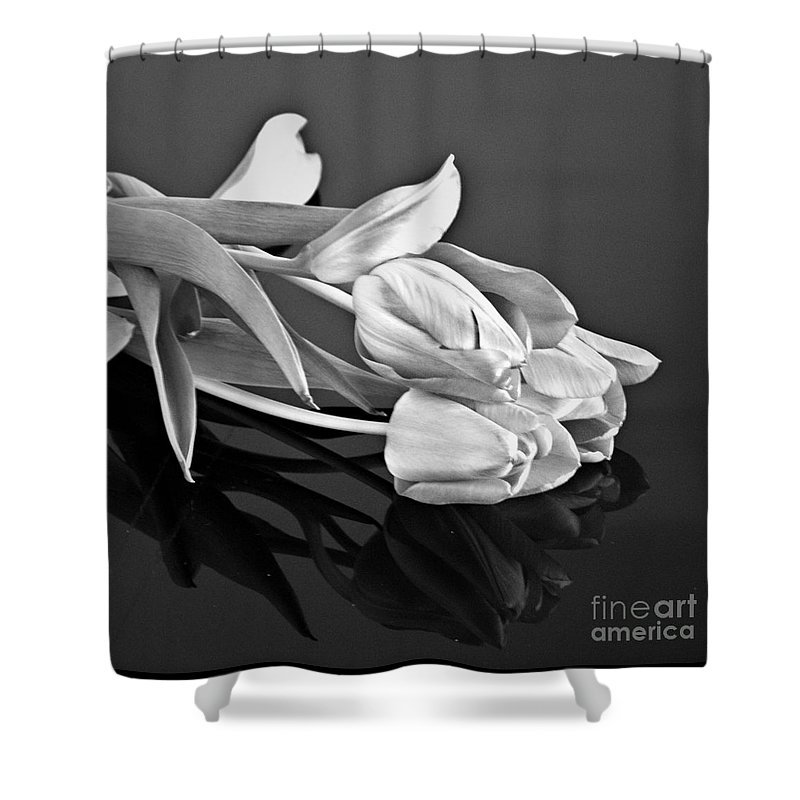 Tulips Shower Curtain featuring the photograph Even Tulips Are Beautiful In Black And White by Sherry Hallemeier