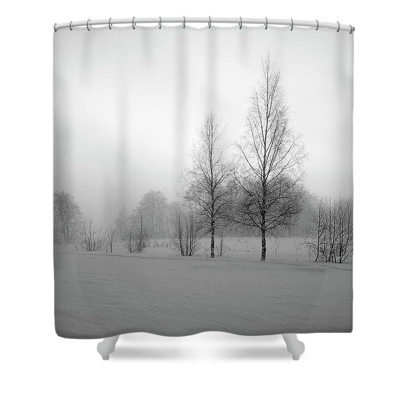 Lehtokukka Shower Curtain featuring the photograph Evening Birches Bw by Jouko Lehto