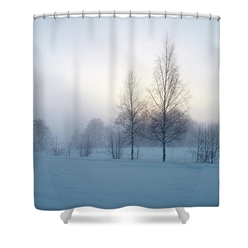 Lehtokukka Shower Curtain featuring the photograph Evening Birches by Jouko Lehto