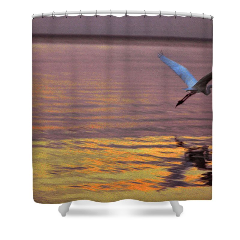 Heron Shower Curtain featuring the photograph Evening flight by Susanne Van Hulst