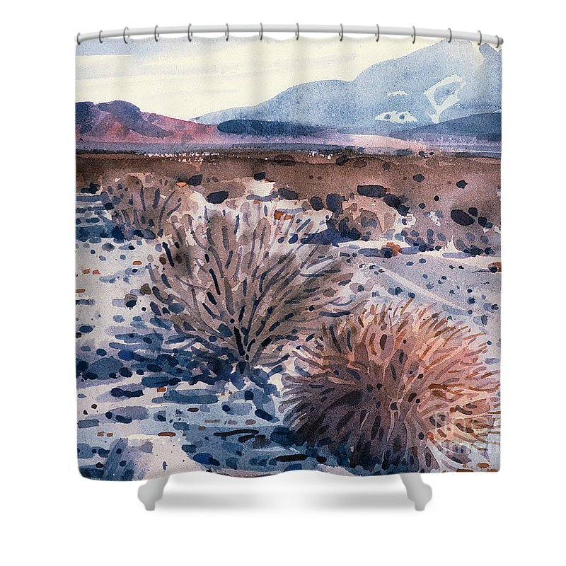 Sage Shower Curtain featuring the painting Evening In Death Valley by Donald Maier