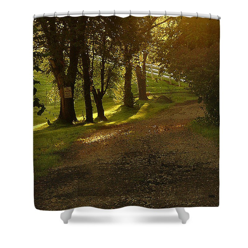Landscape Shower Curtain featuring the photograph Evening Path by Steve Karol