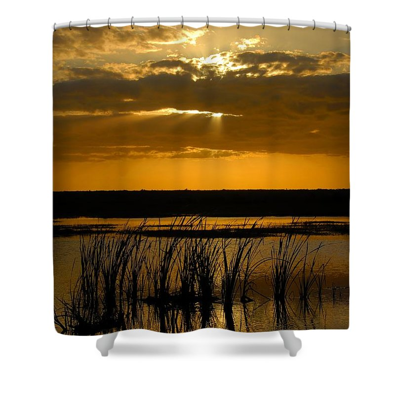 Everglades National Park Florida Shower Curtain featuring the photograph Everglades Evening by David Lee Thompson
