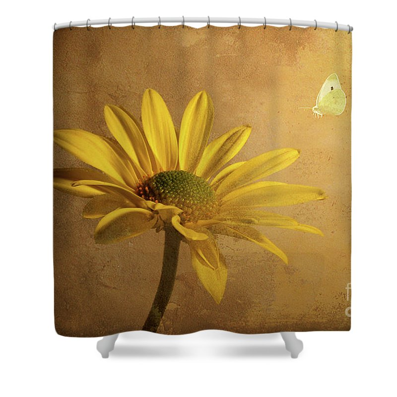 Daisy Shower Curtain featuring the photograph Expectant by Lois Bryan